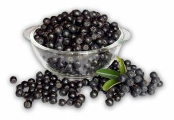 Picture of Aronia Berries - 8 oz